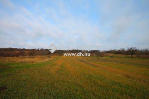 Eladó Telek, Veszprém megye, Várpalota - Várpalota